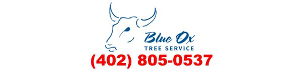 Tree Care in Lincoln, Nebraska